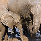 African elephants - mother and calf by Hannah Nicholas