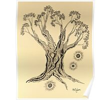 Shining in Serenity Tree in Sepia Poster