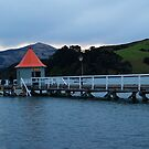 Akaroa Pier by Justine Armstrong
