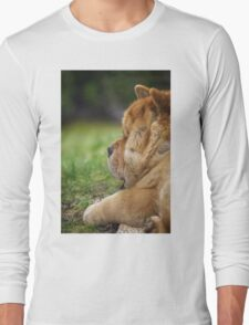 Chow-Chow dog portrait Long Sleeve T-Shirt