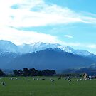 Kiwi Scenery by Justine Armstrong