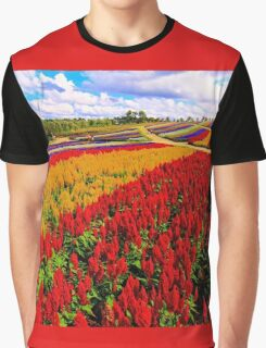 Colorful Plumed Cockscomb Lavender Flower Field Graphic T-Shirt