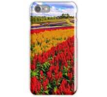 Colorful Plumed Cockscomb Lavender Flower Field iPhone Case/Skin