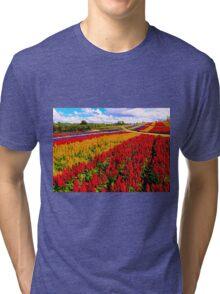 Colorful Plumed Cockscomb Lavender Flower Field Tri-blend T-Shirt