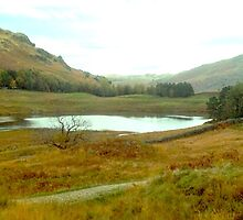 Blea Tarn - Reverse View by GeorgeOne