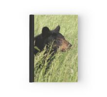 Black Bear @ Great Smoky Mountains National Park Hardcover Journal