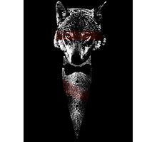 Wolf Of Bangstry Photographic Print