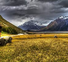 Mt Cook Region by Robyn Carter