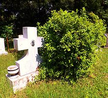 Shrubbery Cross Artistic Photograph by Shannon Sears by twobrokesistas