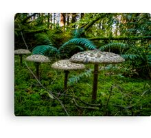 Follow Me Little Ones ~ Wild Mushrooms ~ Canvas Print