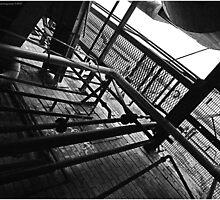 Catwalk by Polar Impressions  Photography