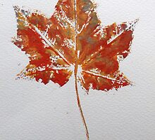 Maple Leaf Print 1 by Jennifer J Watson