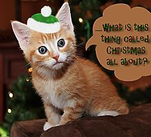 What is this thing called Christmas all about? by Vickie Emms