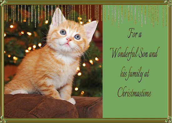 For A Wonderful Son and His Family At Christmastime by Vickie Emms
