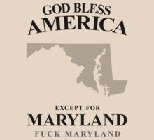God Bless America Except For Maryland by crazytees