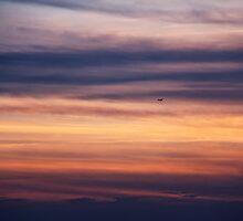 Plane by Motti Golan