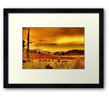 VIneyards, Maple Bay Canada Framed Print