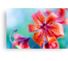 Orange lilly on green. Canvas Print