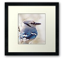 Blue on a Gray Day Framed Print