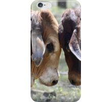 BULL FIGHT  IN THE OUTBACK iPhone Case/Skin