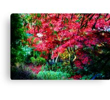 Magestic Autumn Canvas Print