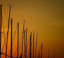 Masts at Sunset by Mark Imhof