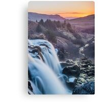 Fintry Loup  Canvas Print