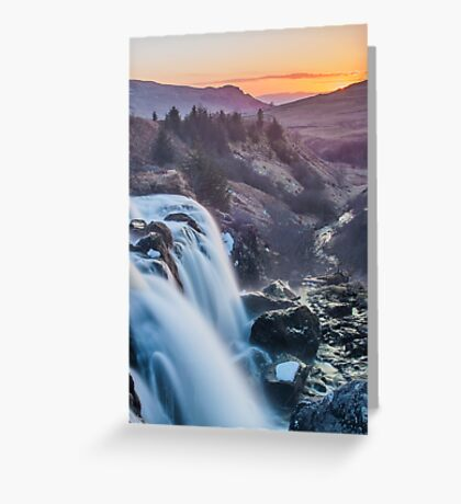 Fintry Loup  Greeting Card