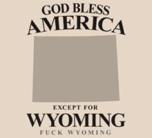God Bless America Except For Wyoming by crazytees