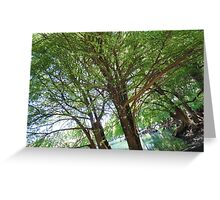 Quit leafing around  Greeting Card