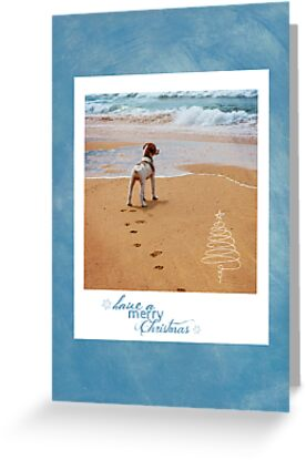 Christmas Card 11 by Australian Brittanys