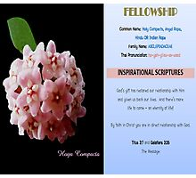 FELLOWSHIP Photographic Print