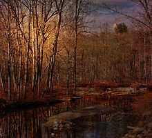 Light on the Old Canal by PineSinger