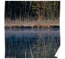 Grebe on a Mirror - Turee Pond - Bow, NH 10-29-13 Poster
