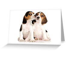 Puppies Beagles! Greeting Card