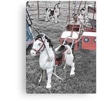 An Old Fashioned Steed  Canvas Print