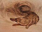 PYROGRAPHY: Platypus by aussiebushstick