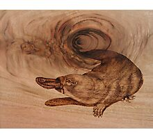 PYROGRAPHY: Platypus Photographic Print