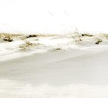 Snow Dune by Elizabeth Thomas