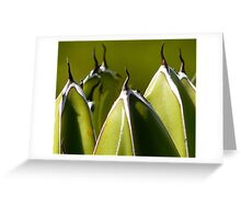 More Spikes ahead ! Greeting Card