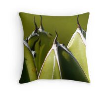 More Spikes ahead ! Throw Pillow