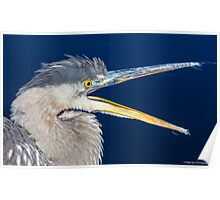Great Blue Heron - Turee Pond - Bow, NH 11-05-13 Poster