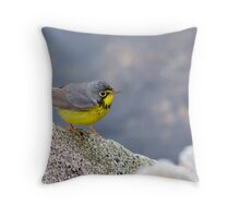 1st Spring Male Canada Warbler - Star Island, 05-24-13 Throw Pillow