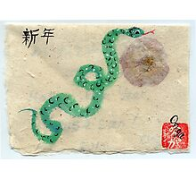 Year of the Snake Photographic Print