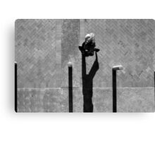 Pedestrian Black and White 4 Canvas Print