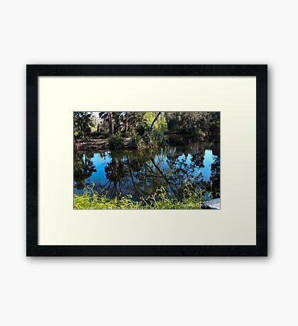 The Royal Botanical Gardens Framed Print
