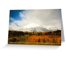 Fall Colors and Evergreens in snow Colorado Greeting Card
