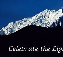 Celebrate The Light by teresalynwillis