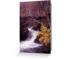 Stream crossing in Glen Affric (cropped to suit cards) Greeting Card
