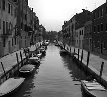 "Typical ""Street"" in Venice by Rodney Johnson"